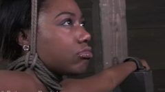 Exotic Beauty Mahina Zaltana Tied Up And Face Smashed With Rough Nipple Clamps